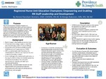 Register Nurse Unit Education Champions: Empowering and Enabling RN Staff Leadership and Development by Renee Rassilyer-Bomers and Margo Bykonen